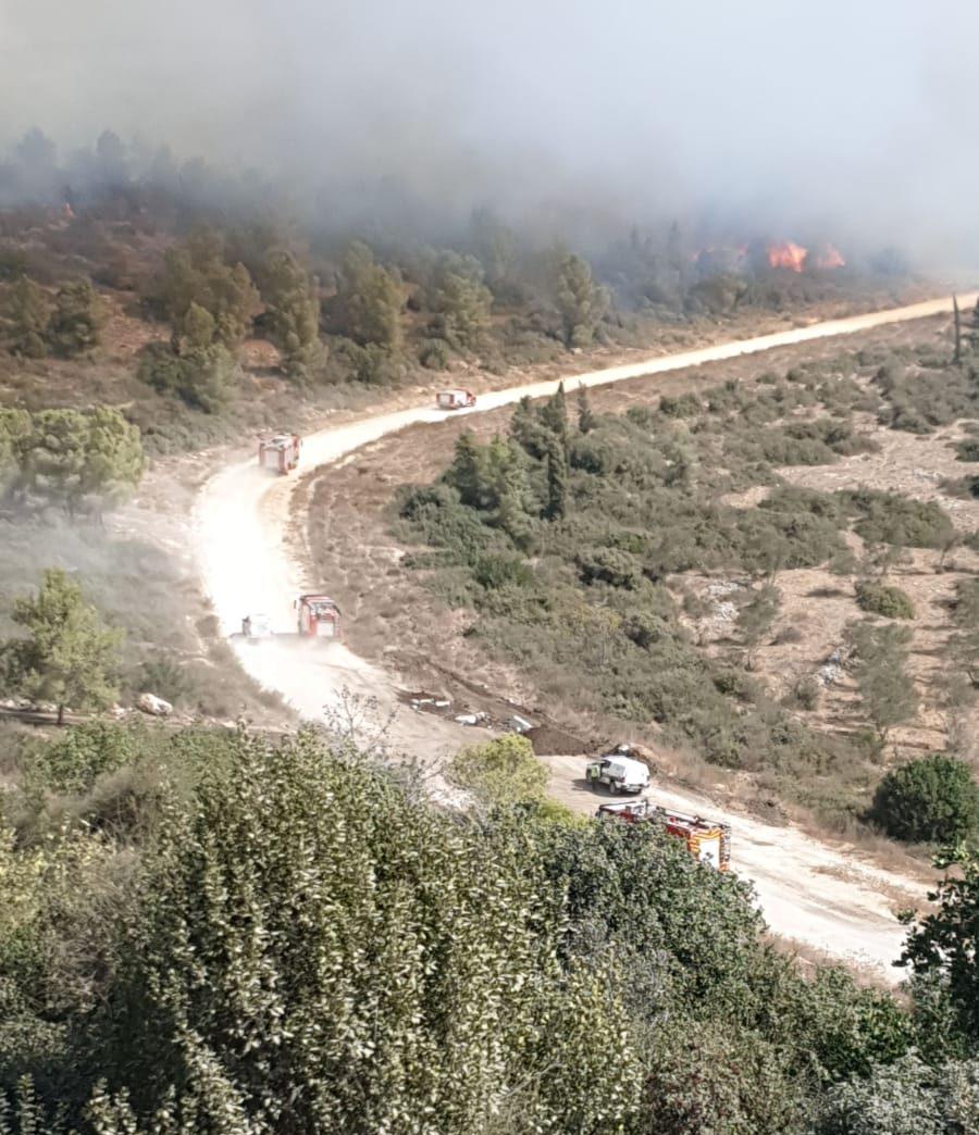 שריפה ביערות ליד חריש