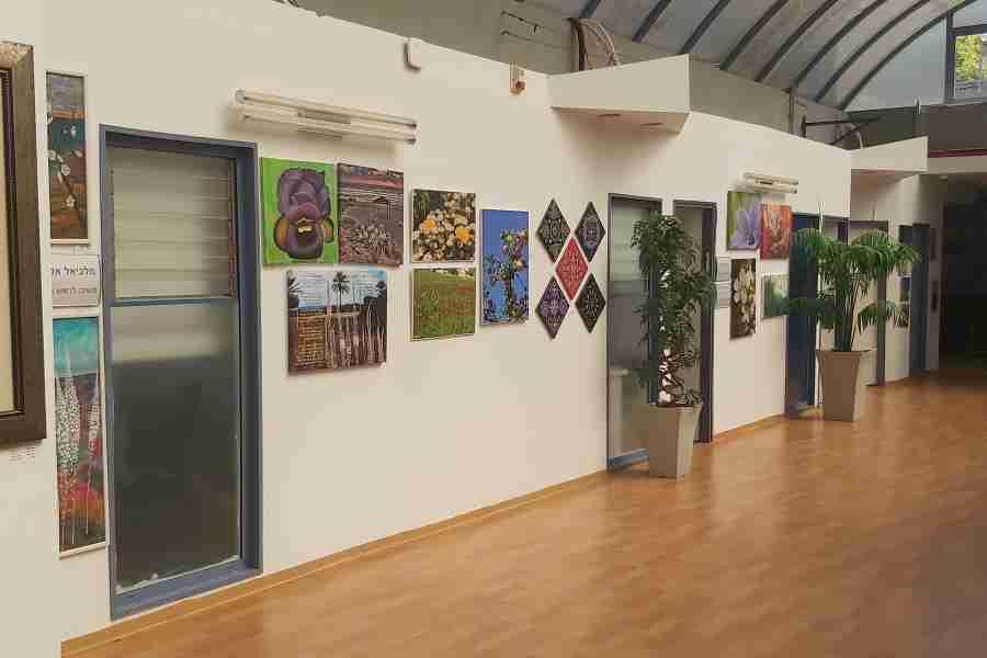 תערוכת 'אהבת הצומח בעירי' מוצגת בקומת ההנהלה בבניין עיריית חדרה